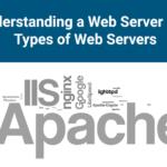 وب سرور چیست؟ با انواع وب سرور آشنا شوید